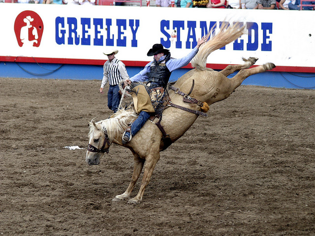 #realestateinnortherncolorado #johnfeeney #greeleystampede