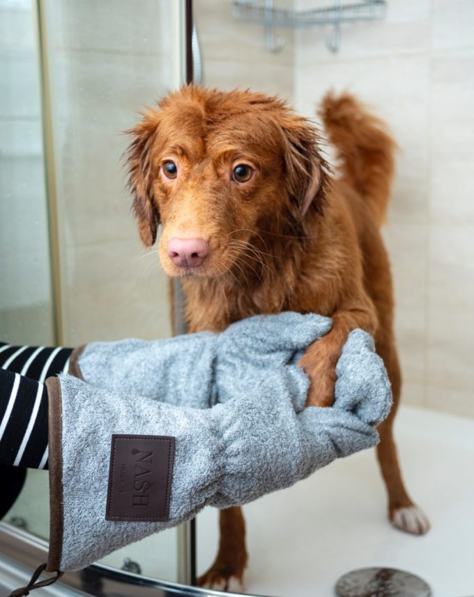 Create a dog washing station at your new home
