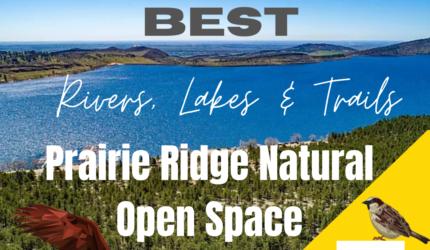 Best Bird Watching at Prairie Ridge Natural Space in Loveland Colorado