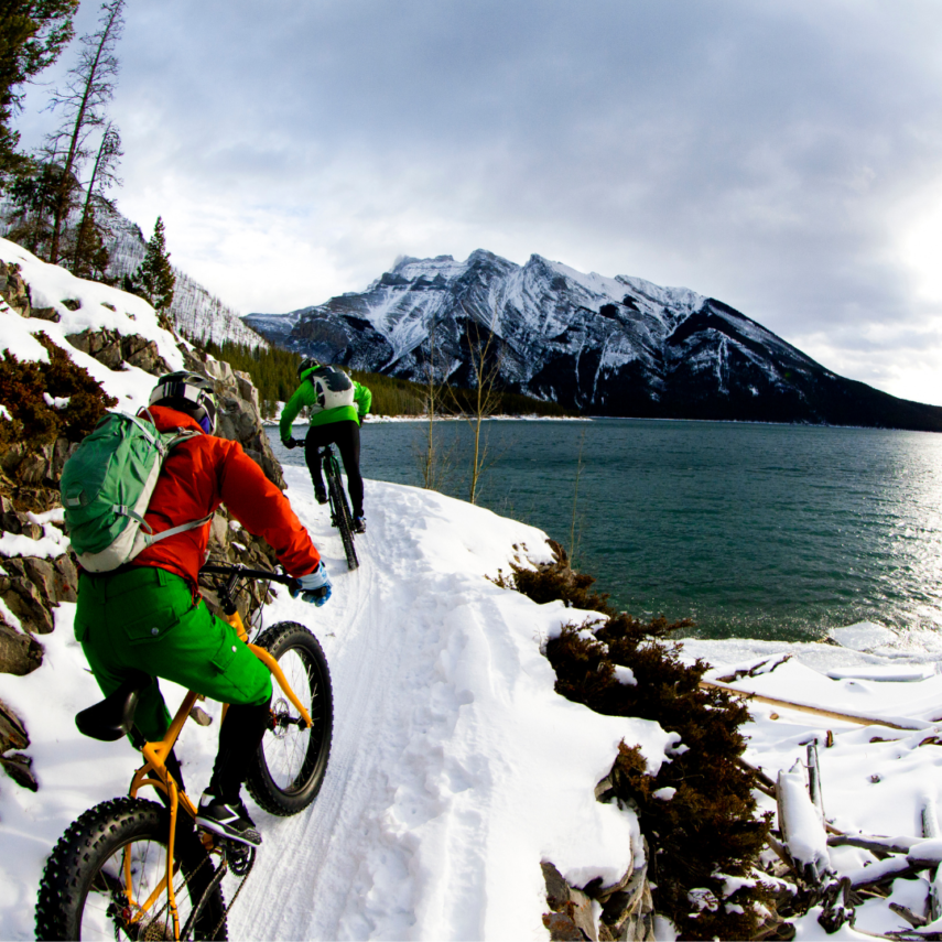 Mountain Biking is a Favorite Colorado Activity