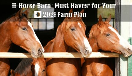 """11-Horse Barn """"Must Haves"""" for Your 2021 Farm Plan"""